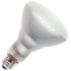 65W Frost BR30 Flood Lamp - 91-1182-00